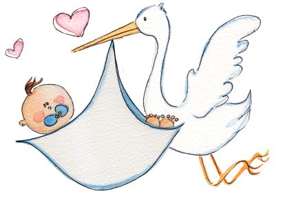 Questa la notte della cicogna attenzione viva la mamma - Immagini di cicogne che portano bambini ...