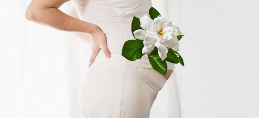 pancione_gardenia